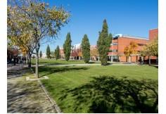 Alameda central, campus de Santiago. Universidade de Aveiro